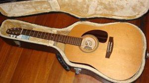 הוצאת הגיטרה מהנרתיק שלה